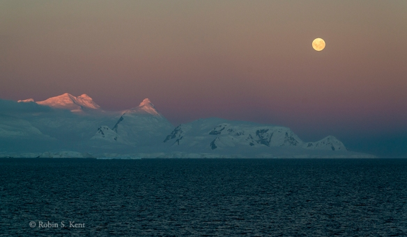Antarctica 26