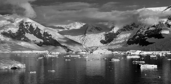 Antarctica 30