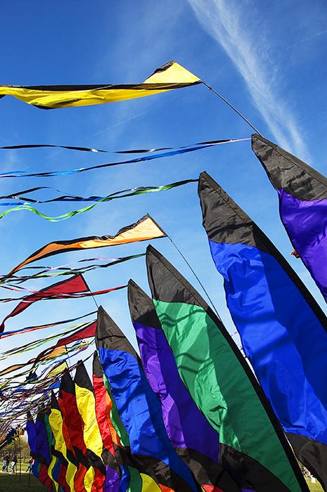Kite Festival 03
