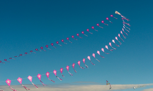 Kite Festival D-15-03-28-9498