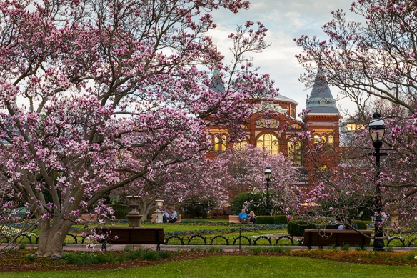 Smithsonian 04