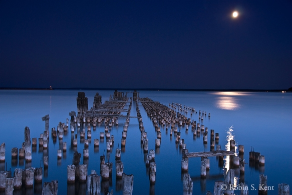 Low Light (Pilings) D-07-08-25-0028